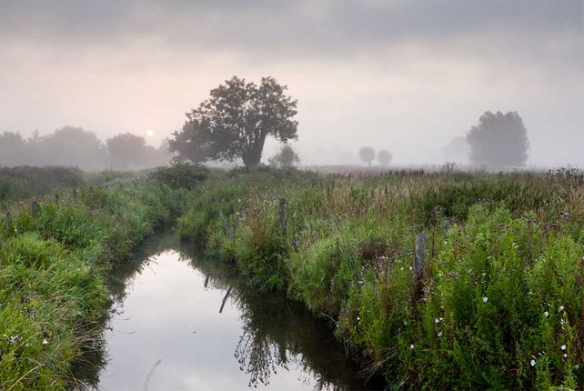 Marais-Vernier-5©-Eure-Tourisme,-T.-Houyel